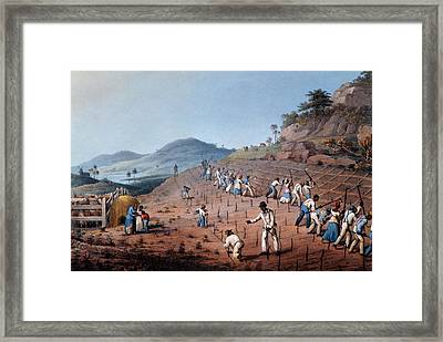 Breaking Up The Land, From Ten Views Framed Print by William Clark
