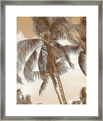 Breeze Framed Print by Athala Carole Bruckner
