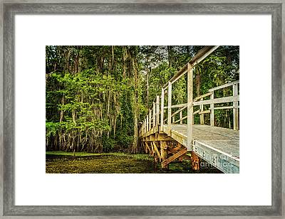 Caddo Lake Bridge Into The Forest Framed Print by Tamyra Ayles