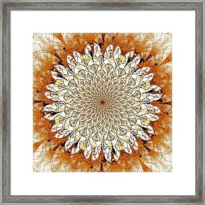 Bright Flower Framed Print by Anastasiya Malakhova