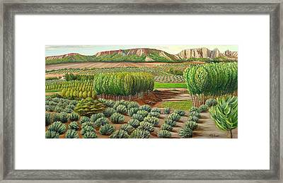Bright Morning In Alcudia Framed Print by Angeles M Pomata