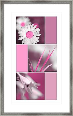Bright Pink Flowers Collage Framed Print by Christina Rollo