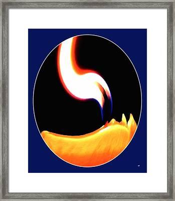 Bright Spot Framed Print by Will Borden