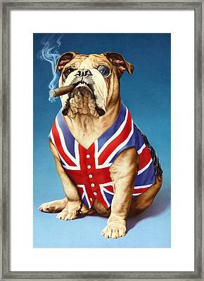 British Bulldog Framed Print by Andrew Farley