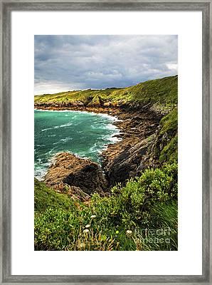 Brittany Coast Framed Print by Elena Elisseeva