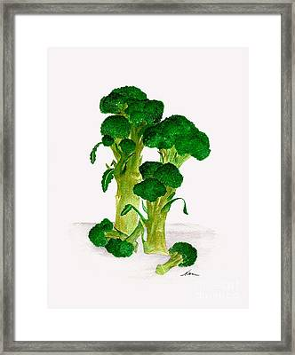 Broccoli Stalks Bright And Green Fresh From The Garden Framed Print by Nan Wright