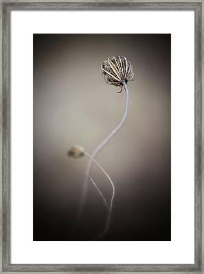 Broken Braid Framed Print by Russell Styles