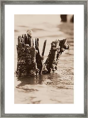 Broken Pier II Framed Print by Hillery Bosarge