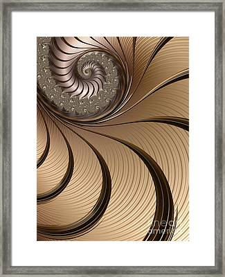 Bronze Spiral Framed Print by John Edwards