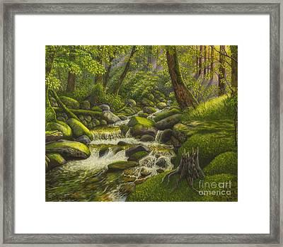 Brook In The Forest Framed Print by Veikko Suikkanen