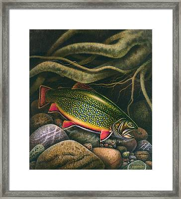 Brook Trout Lair Framed Print by JQ Licensing