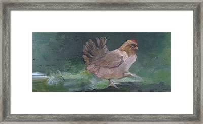 Brown Hen Framed Print by Donna Ellery