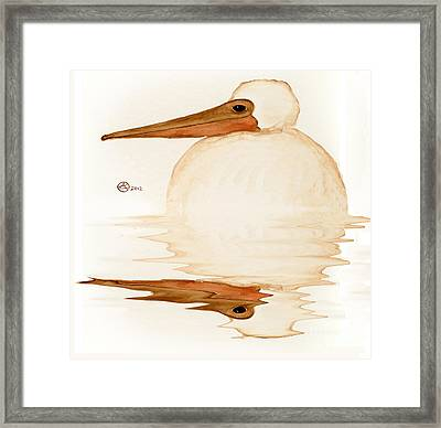 Brown Pelican Chick Reflection Framed Print by Alexandra  Sanders