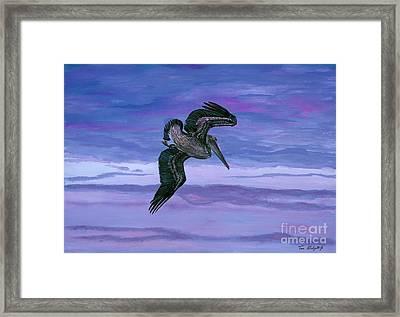 Brown Pelican Framed Print by Tom Blodgett Jr