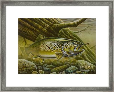 Brown Trout Log Framed Print by Jon Q Wright