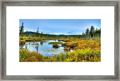 Browns Tract Inlet Waterway Framed Print by David Patterson