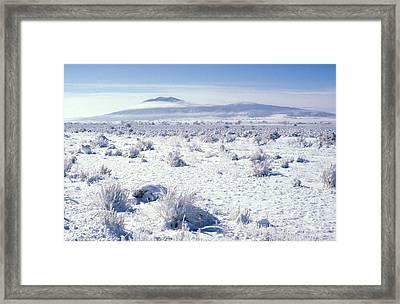 Brrrr 1021 Framed Print by Brent L Ander