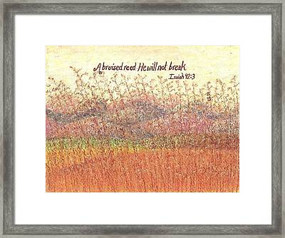 Bruised Reed Framed Print by Catherine Saldana
