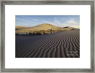 Bruneau Dunes And Lake, Idaho Framed Print by William H. Mullins
