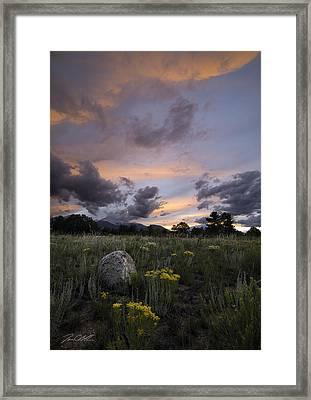 Brush Fire Framed Print by Jon Blake