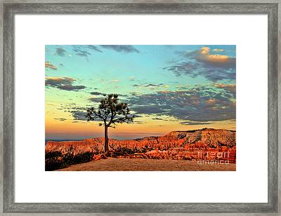 Bryce Canyon Framed Print by Leslie Kirk