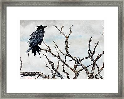 Bryce's Raven Framed Print by Monte Toon