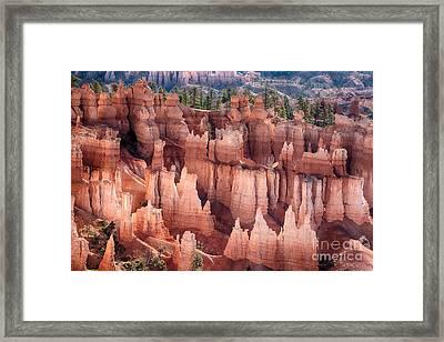 Bryce Canyon Utah Views 92 Framed Print by James BO  Insogna