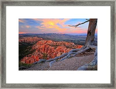 Bryce Sunset Glow Framed Print by Adam Jewell
