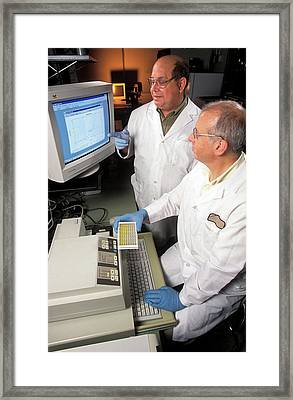 Bse Diagnostics Research Framed Print by Peggy Greb/us Department Of Agriculture