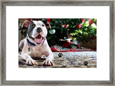 Bubba's First Christmas Framed Print by Shelley Neff