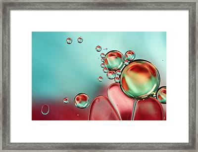 Bubble Balance Framed Print by Sharon Johnstone