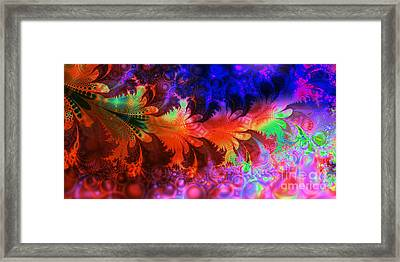 Bubbles And Leaves Framed Print by Ian Mitchell