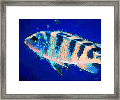 Underwater Diva Framed Print featuring the painting Bubbles - Fish Art By Sharon Cummings by Sharon Cummings