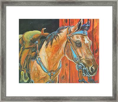 Buckskin Filly Framed Print by Jenn Cunningham