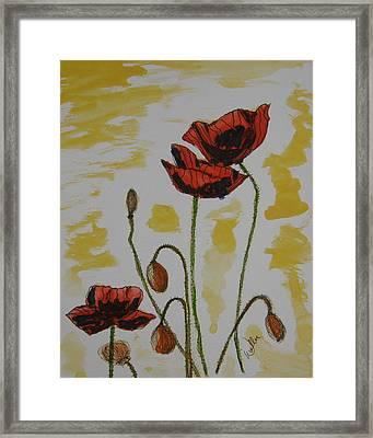 Budding Poppies Framed Print by Marcia Weller-Wenbert