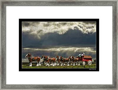 Budweiser Clydesdales Framed Print by Blake Richards