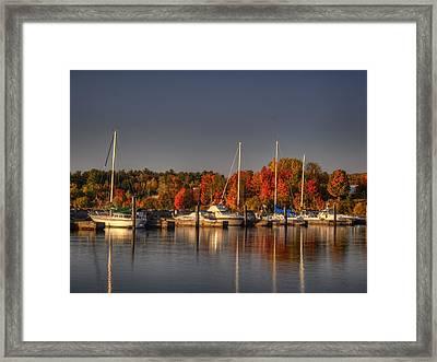 Buffalo Bay Marina 1 Framed Print by Thomas Young
