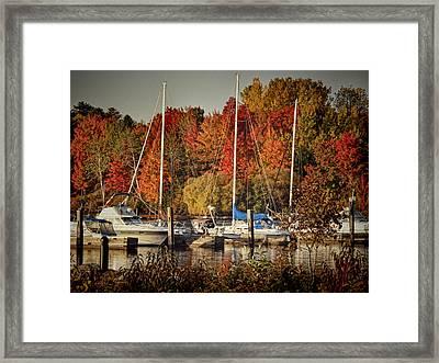 Buffalo Bay Marina 2 Framed Print by Thomas Young