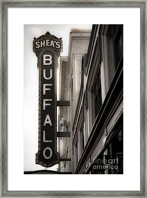 Buffalo Framed Print by Ken Marsh