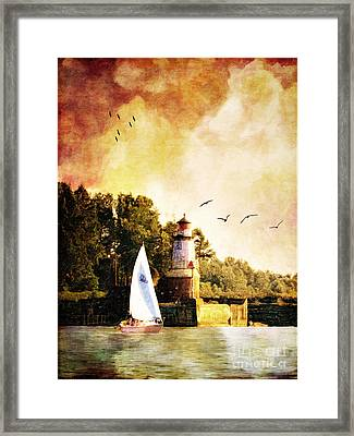 Buffalo South Entrance Light Framed Print by Lianne Schneider