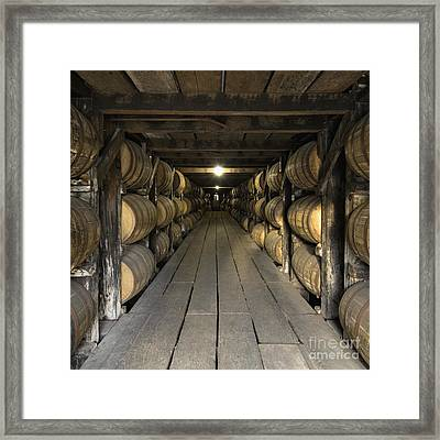 Buffalo Trace Rick House - D008610sq Framed Print by Daniel Dempster