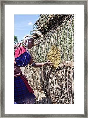 Building A Maasai Hut Framed Print by Photostock-israel