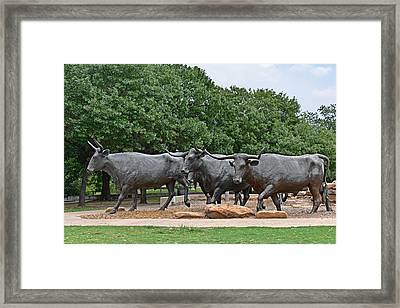 Bull Market Framed Print by Christine Till