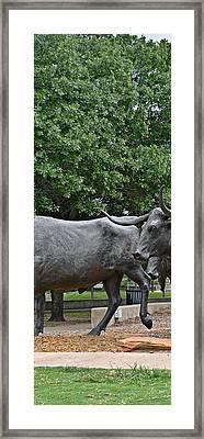 Bull Market Quadriptych 2 Of 4 Framed Print by Christine Till