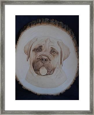 Bull Mastiff Framed Print by Oksana Rahbari
