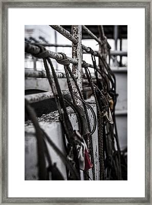 Bull Ropes Framed Print by Amber Kresge