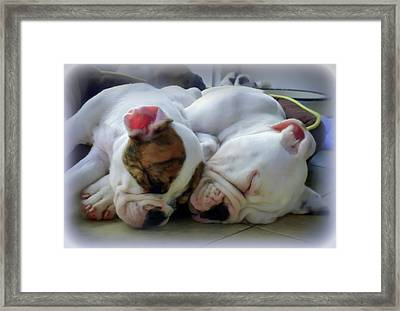 Bulldog Bliss Framed Print by Karen Wiles