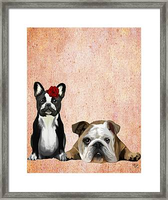 Bulldogs French And English Framed Print by Kelly McLaughlan