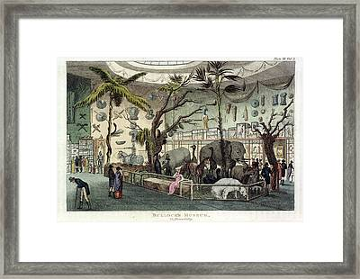 Bullock's Museum Framed Print by British Library