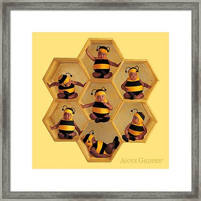 Bumblebees Framed Print by Anne Geddes